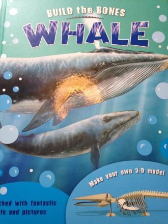 USborne build a whale book
