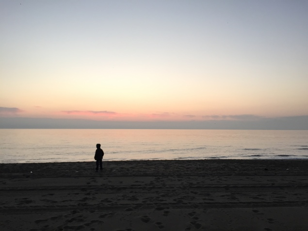 Up at dawn to hunt for more shells