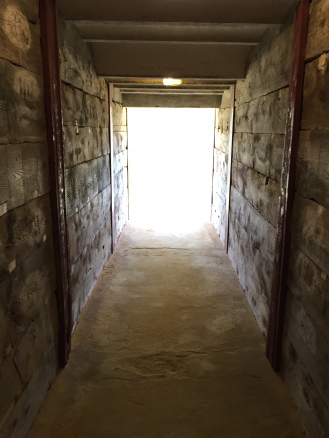 Imagine being a bull in this corridor...